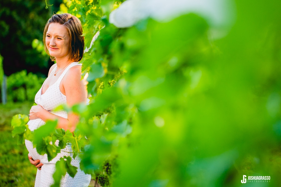 maternity session in a vineyard