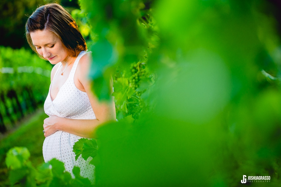 vineyard maternity session