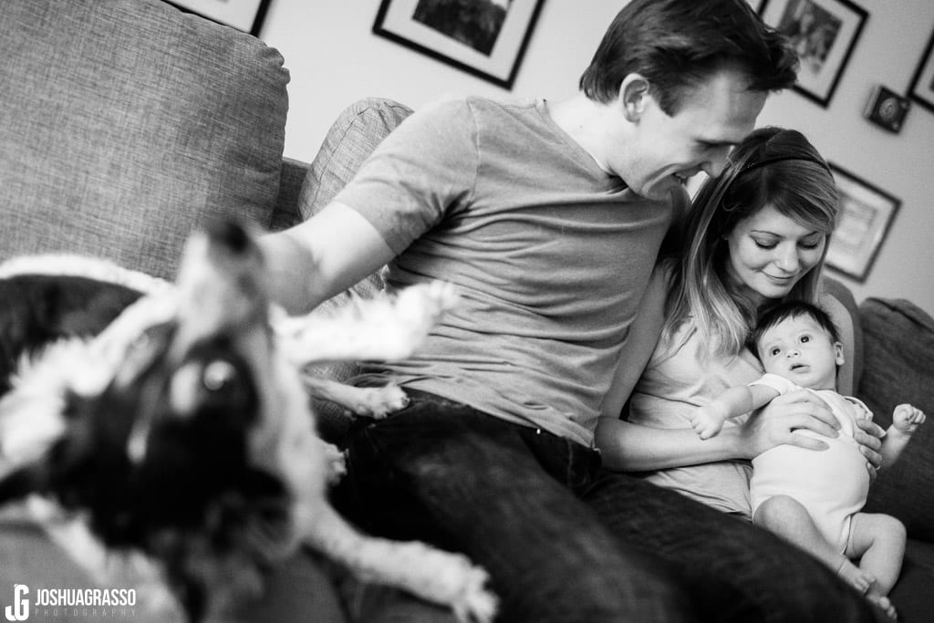 family and dog during atlanta family documentary lifestyle portraits